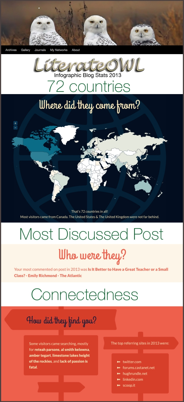 INfoGraphic blog stats 2013